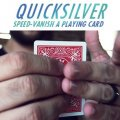 QuickSilver by Mario Tarasini
