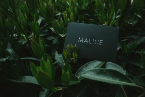 Malice by Lost Art Magic