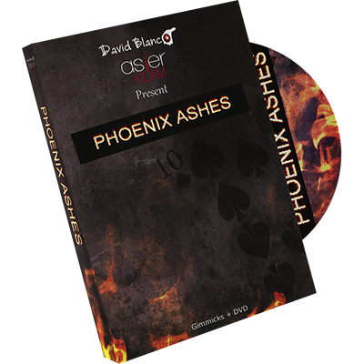 Phoenix Ashes by Asier Kidam